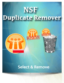 NSF Duplicate Remover